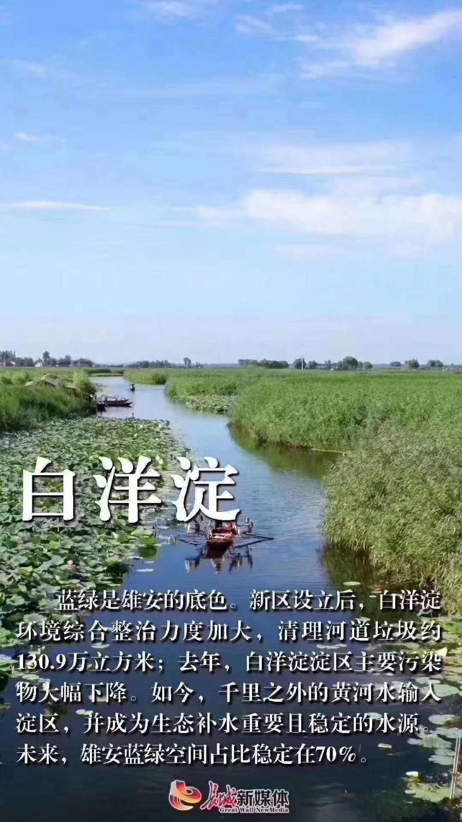 新闻死肥宅武宁新闻中超